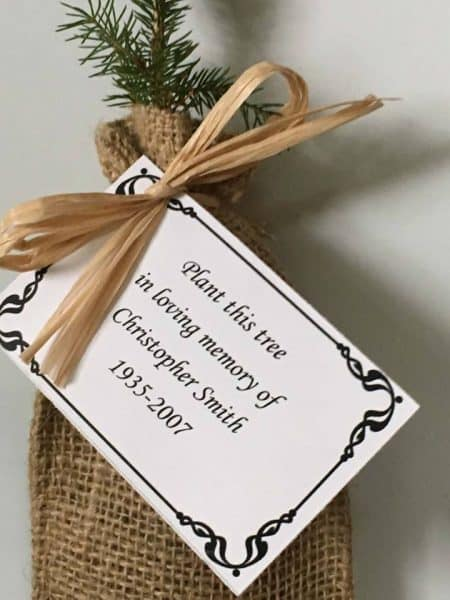 Remembrance tree seedling with Memorial card