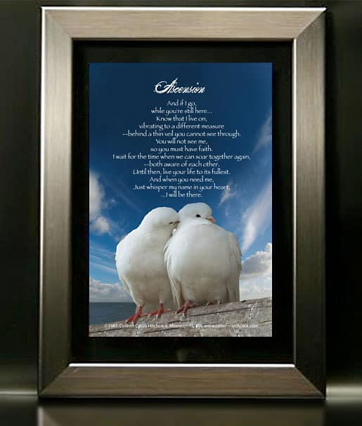 Birds with Nickel Frame