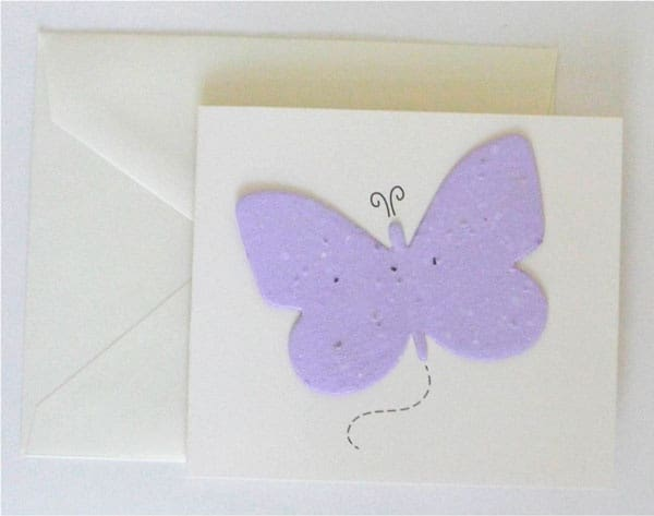 Cream envelope with butterfly card