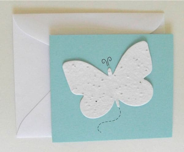 Envelope with butterfly seed cards
