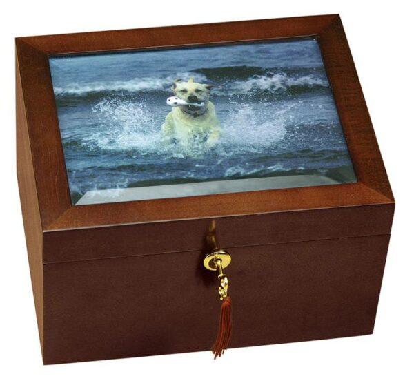 Large Size Dog Urn and Memory Box