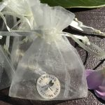 Dragonfly Memorial Coin in Organza Pouch